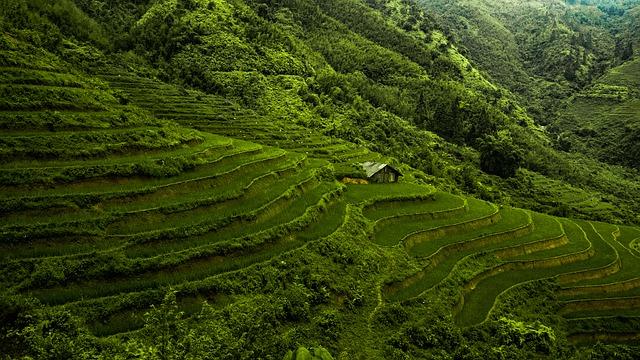 rondreis-vietnam